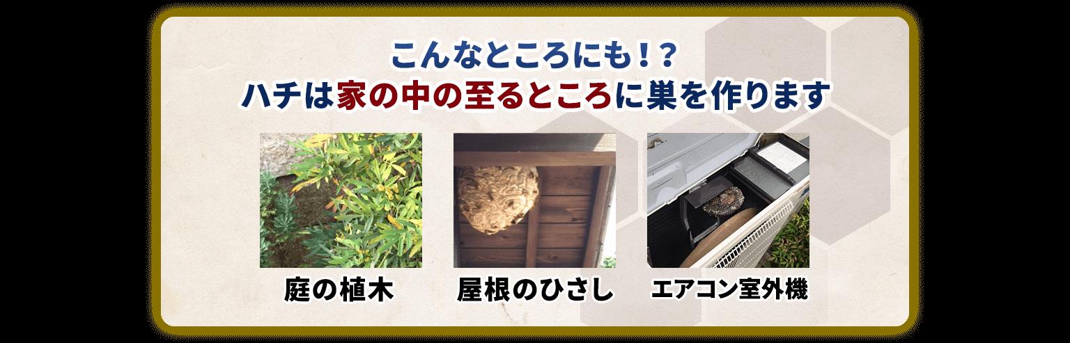 こんなところにも!?ハチは家の中の至るところに巣を作ります